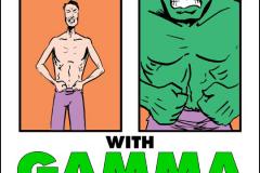 The Fourth Wall - Hulk